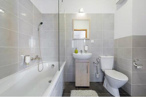 bathtub-basin-faucet-shower