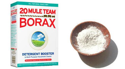 borax-removes-scum-stops-mould