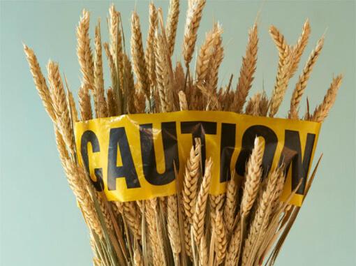 celiac-disease-gluten-intolerance