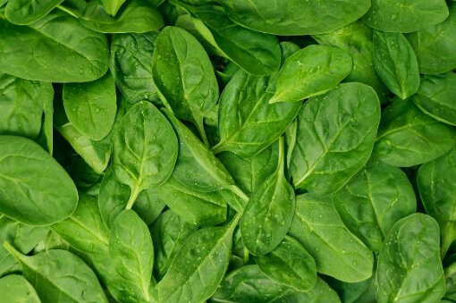 green-spinach-leaves