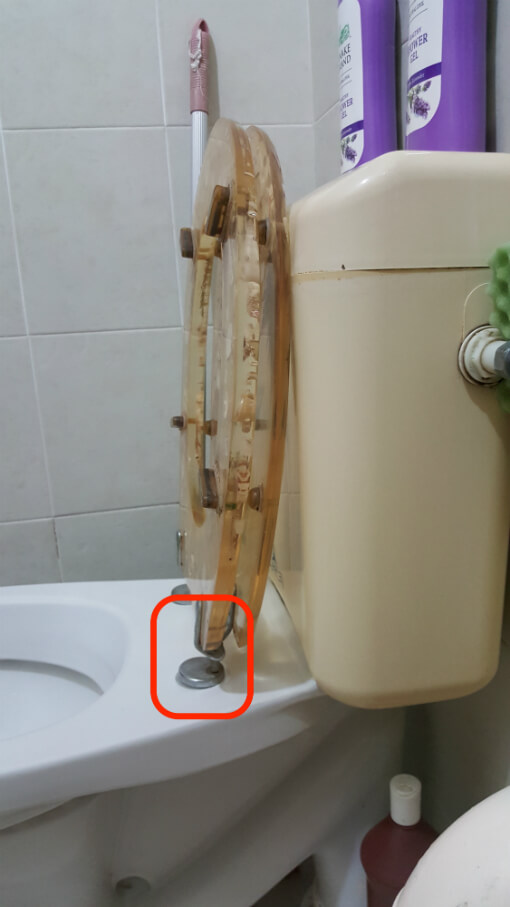 loose-toilet-seat-bolt