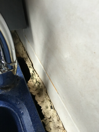 mould-around-kitchen-sink