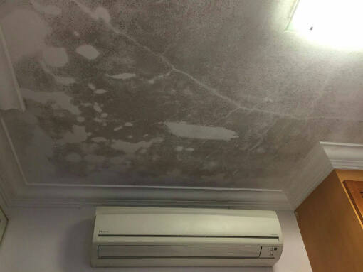 mouldy-ceiling-from-toilet-leak-upstairs