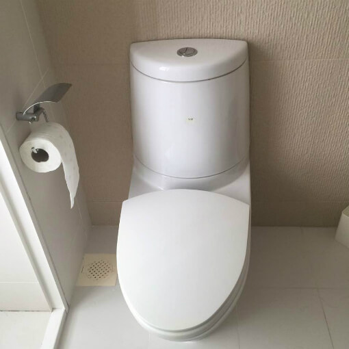 new-dual-flush-toilet