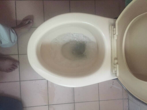 toilet-bowl-clogged