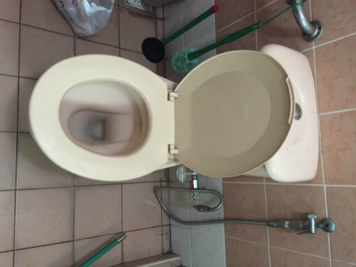 Clogged Toilet Singapore Clearing Toilet Bowl Chokes